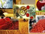 صدور دو  مجوز جدید صنایع تبدیلی و تکمیلی در شهرستان پردیس