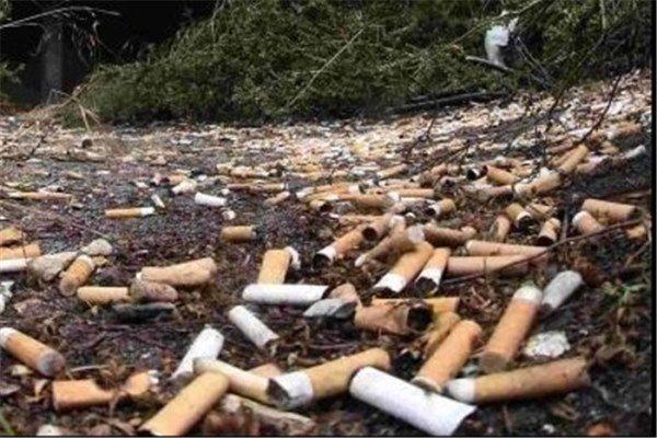 محقق ایرانی در استرالیا راه حل تازهای برای معضل ته سیگارها ابداع کرد