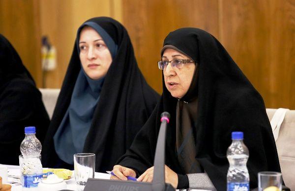 5000 زن روستایی صاحب کسب و کار شدند/ چشمانداز ما در وزارت جهاد کشاورزی هر روستا یک تسهیلگر است