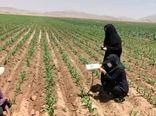 رصد و پایش آفت قرنطینهای کرم برگخوار پاییزه در مزارع شهرستان شهرکرد