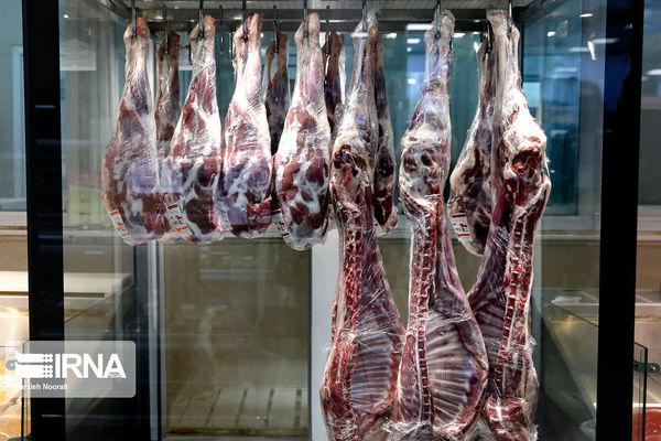 ۱۱.۵ درصد برنامه طرح پیشران افزایش تولید گوشت قرمز کردستان محقق شد