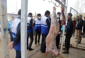 برخورد با عاملان کشتارهای غیرمجاز و کنار جادهای توسط اکیپهای بازرسی بهداشتی دامپزشکی در آذربایجان غربی
