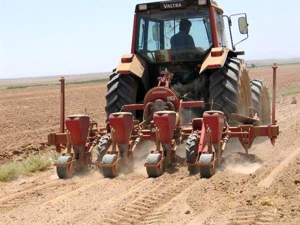 کشاورزی راهگشای اقتصاد ایران در شرایط تحریم