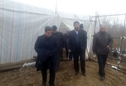 خسارت ۹۵۰ میلیارد ریالی زلزله به بخش کشاورزی استان آذربایجان شرقی