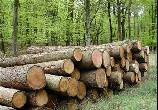 گردش چرخهای مجهزترین کارخانه نئوپان شمالغرب کشور با زراعت چوب