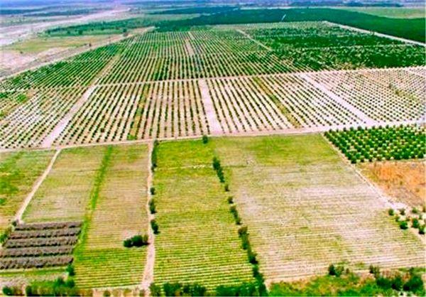 حفظ یکپارچه سازی اراضی از ضروریات توسعه پایدار در بخش کشاورزی