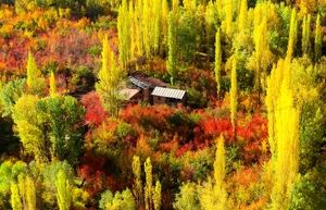 معجزهی پاییز را فقط در این 4 نقطهی ایران ببینید