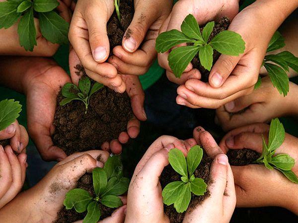 لزوم مشارکت مردم در حفاظت از خاک