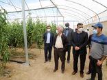 هرمزگان نقش مهمی در خودکفایی محصولات کشاورزی دارد