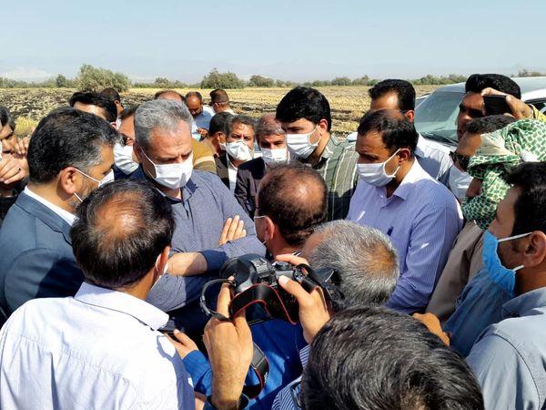 امتیازدهی وزیر جهاد کشاورزی برای یکپارچه سازی اراضی