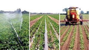 ۸۹۲ طرح کشاورزی در خراسان شمالی معطل تامین منابع