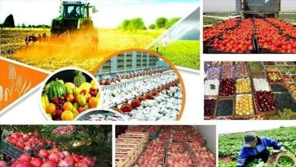 افزایش 30 درصدی تولید محصولات کشاورزی در شهرستان کیار