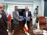 همکاری فائو با ایران در مبارزه با آفت ملخ صحرایی