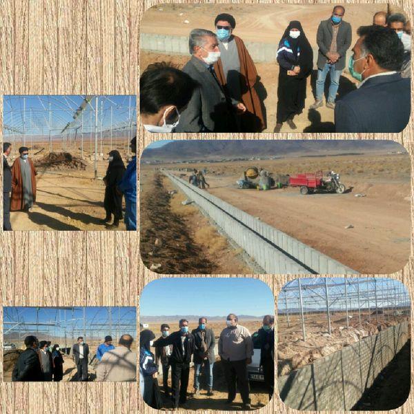 بازدید ریاست سازمان از مجتمعهای گلخانهای شهرستان سربیشه