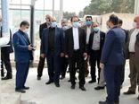 احداث بزرگترین گلخانه شیشهای استان تهران درشهرستان پیشوا