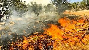 عملیات پیشگیری از وقوع آتش سوزی در عرصه های ملی چهارمحال و بختیاری  انجام شد