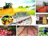 حکم دیوان عدالت اداری، تقاضای مجوز ایجاد واحدهای کشاورزی را ۹۰ درصد کاهش داد