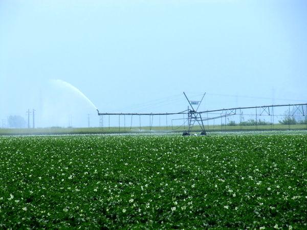 توسعه کشاورزی با تسهیلات 2 هزار میلیاردی