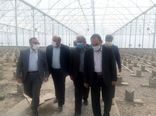 تحقق شعار سال با توسعه سرمایه گذاری در بخش کشاورزی امکانپذیر است
