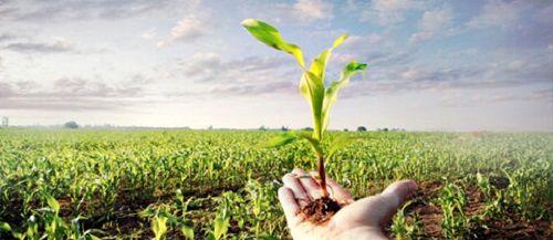 اقدامات ترویجی جهاد کشاورزی امر به معروف است