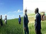 ارائه آموزشهای تخصصی به بهره برداران بخش کشاورزی
