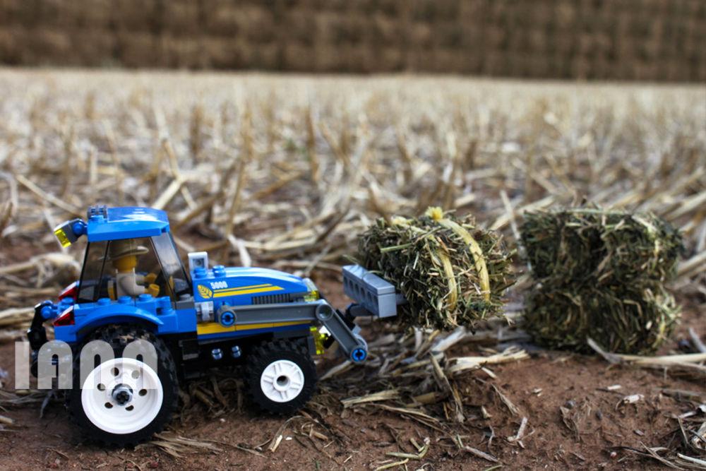 کشاورز لگویی
