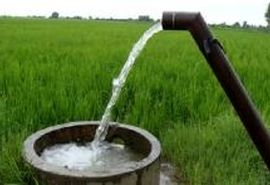 نرخ آببهای کشاورزان بوشهری اصلاح شود