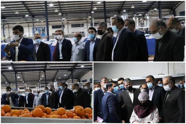 بازدید وزیر جهاد کشاورزی از شرکت تولیدی گلدشت در شهرستان جهرم