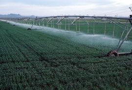 بهرهبرداری از شش طرح کشاورزی  در شهرستان نیر