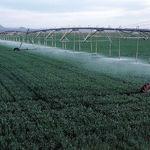 تجهیز ۲.۱ میلیون هکتار از اراضی آبی کشور به سیستم های نوین آبیاری