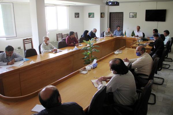 برگزاری ششمین جلسه پایش و پیش آگاهی تولیدات گیاهی