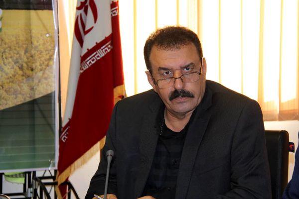 تولید 100 تن بذر کلزا مازاد بر نیاز استان