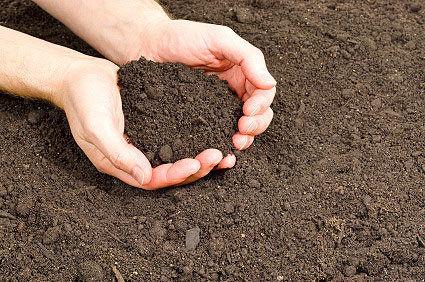 فرسایش، مهم ترین چالش مدیریت پایدار خاک