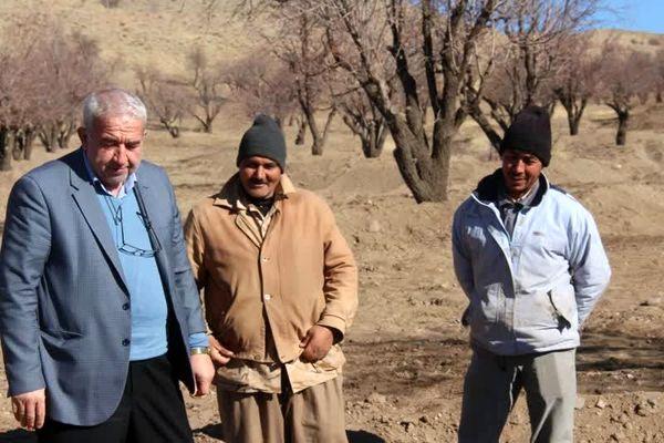 بازدید رئیس سازمان جهادکشاورزی از طرح ایجاد سامانه آبگیر در بادامستانهای دیم کوهسرخ