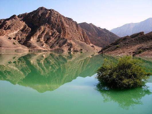 نقش تقویت پوشش گیاهی در کاهش  سیلخیزی حوزه های آبخیز