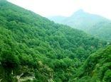 جنگلهای هیرکانی ایران به عنوان میراث طبیعی جهانی