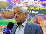 دستیابی ایران به رکورد تولید 2.9 میلیون تن برنج در سال جاری