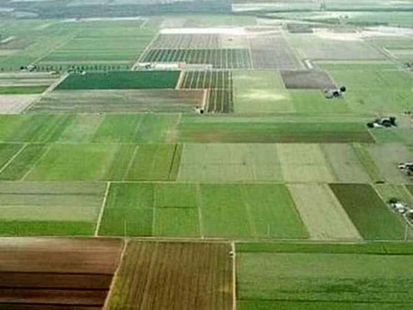 رفع تداخل در بیش از 880هکتار از اراضی شهرستان اردل