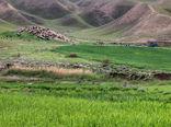 تهیه طرح های مرتعداری برای 450 هزار هکتار از مراتع استان تهران