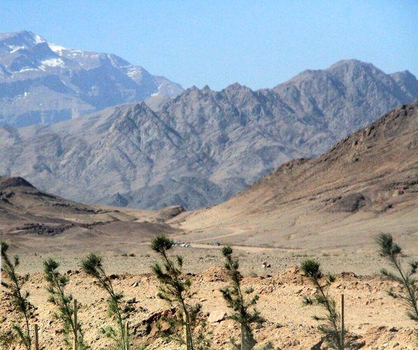 طرح حدنگاری در ۱.۳ میلیون هکتار از اراضی اصفهان اجرا شد
