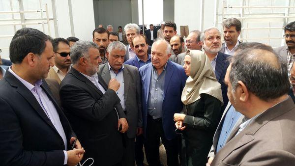 بازدید حجتی از یک طرح مبتکرانه ایجاد گلخانه که برای نخستین بار در خاورمیانه صورت می گیرد