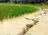 آخرین وضعیت پرداخت غرامت سیل به بخش کشاورزی در خراسان شمالی