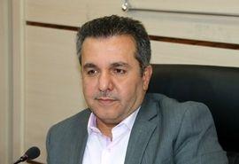 فراهم شدن مقدمات سرمایهگذاری قطر در تولید گوشت قرمز