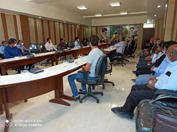 کشاورزان  پیشرو شهرستان بوئین زهرا با راهکارهای نوین افزایش عملکرد کلزا آشنا شدند