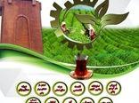 اولین جشنواره ملی چای کشور برگزار می شود