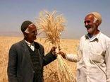 پرداخت 795 میلیارد ریال از  مطالبات کشاورزان