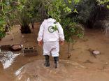آخرین اخبار از خسارات سیل به کشاورزی دشتستان/ از آسیب به مزارع تا سازه های گلخانه ای و دامپروری