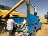 ۸۰ تن کلزای برداشت شده از مزارع شهرستان کیار تحویل سیلو شد