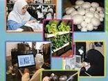 صدور 31 مجوز مشاغل خانگی  کشاورزی در بوئین زهرا