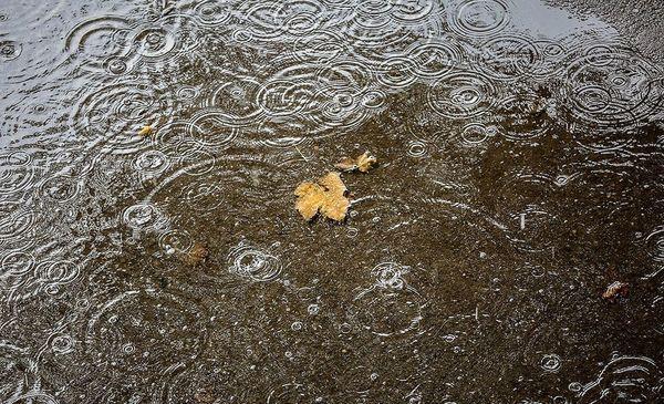 هفته بارانی در انتظار چهارمحال و بختیاری